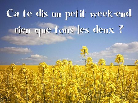 carte Week end amoureux ?